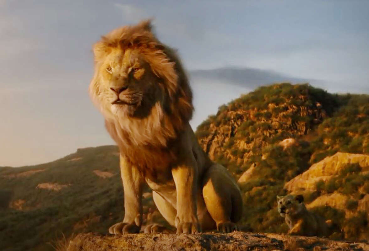 """מוכנים? סרט המשך ל""""מלך האריות"""""""