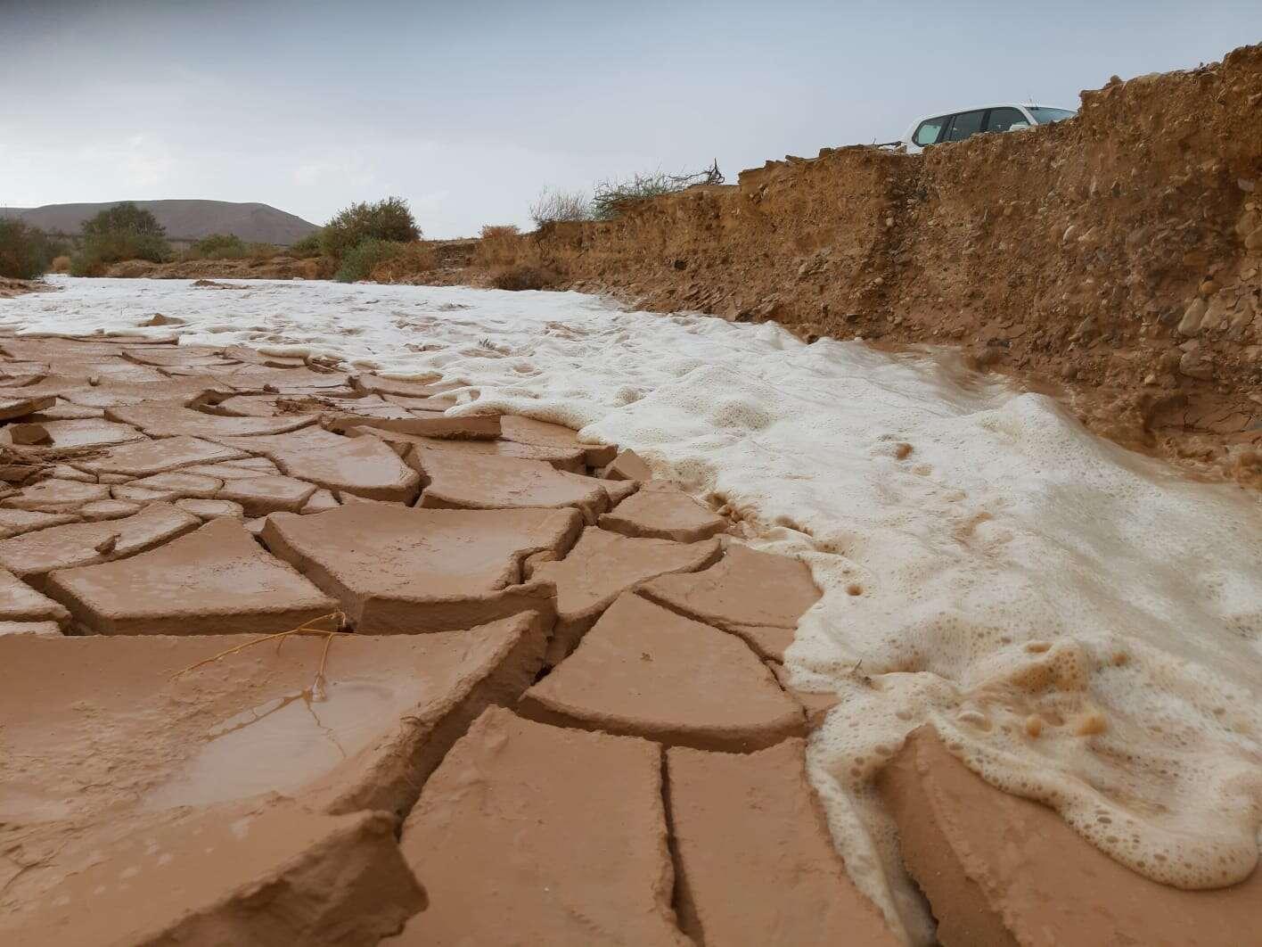 מטיילים פונו מנחלים באזור הערבה