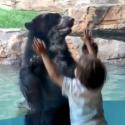 הילד והדוב במחזה מחמם לב