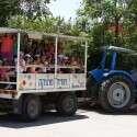 נסיעה על טרקטור בקיבוץ יד מרדכי // צילום: תיירות קיבוץ יד מרדכי
