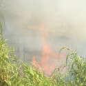 חצר בית שנתפסה באש בשבי שומרון // צילום: שריה דיאמנט/TPS