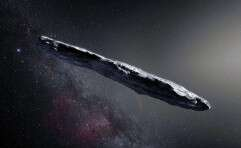 אורך של כ־800 מטרים. האסטרואיד // צילום: אי.אף.פי