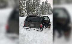הרכב שנתקע בשלג