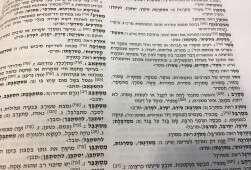 המילים שיצאו לאור לקראת יום השפה העברית