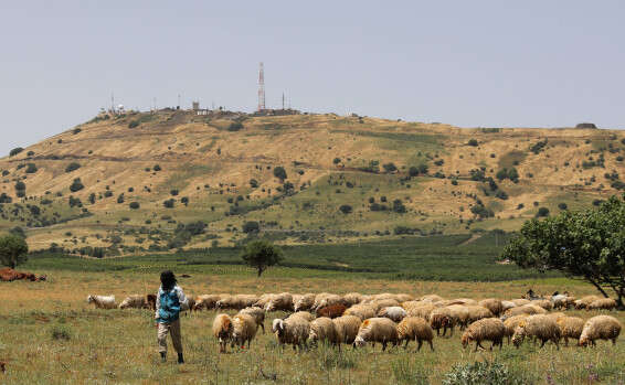"""צה""""ל איתר את שרידי טיל הנ""""מ הסורי בגולן 15435763907331_b"""