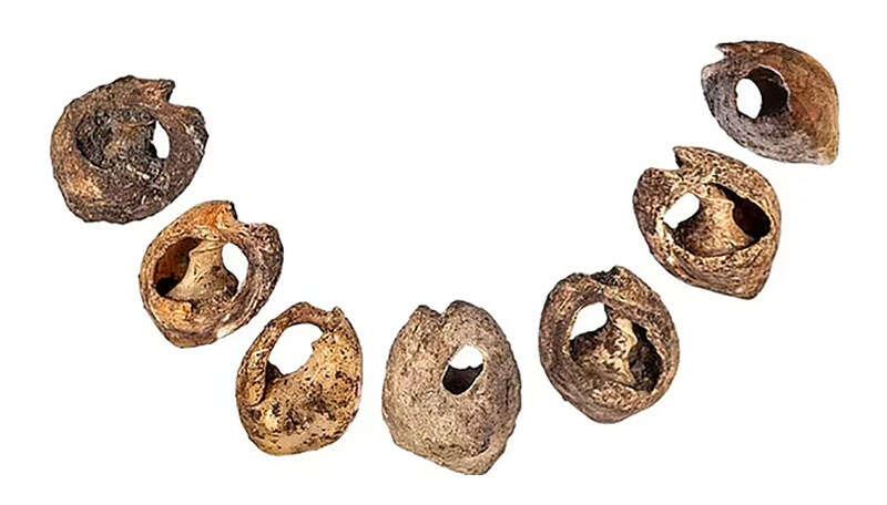 בני 150 אלף שנים: התגלו התכשיטים העתיקים בעולם